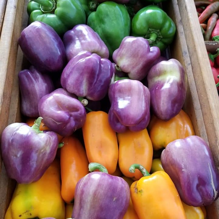 peppers, purple